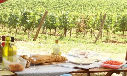 Tour Piquenique no Chianti em meio aos vinhedos