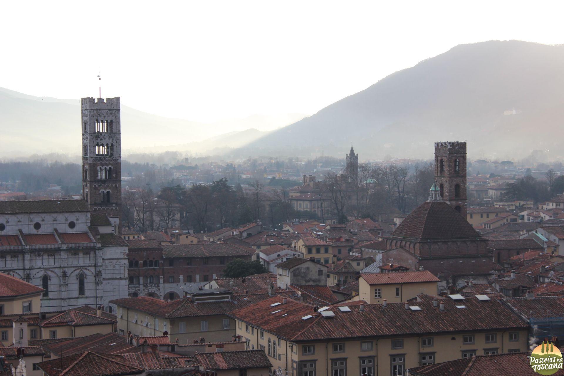 Lucca - torre Guinigi_44