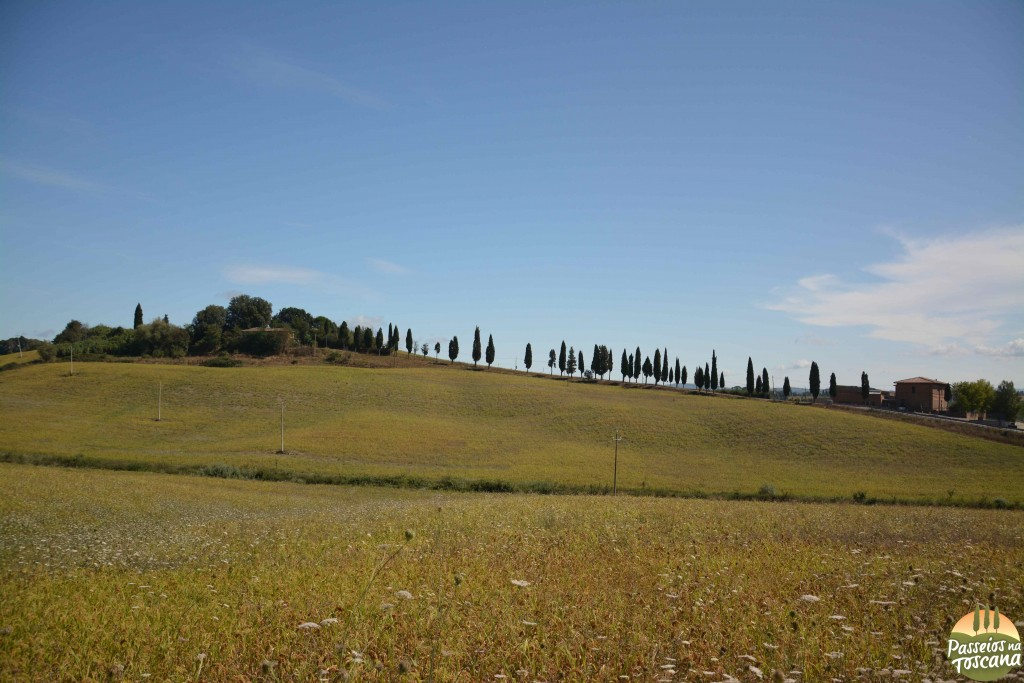 bike val d 'orcia_2