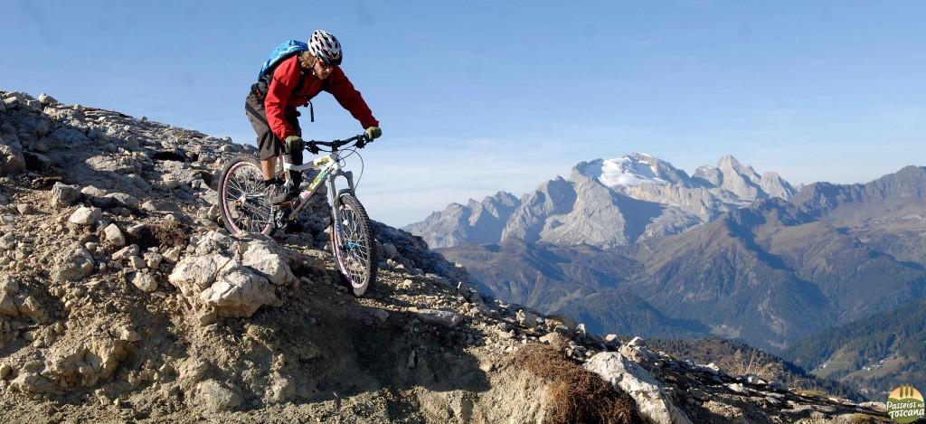 bike 24 300x137