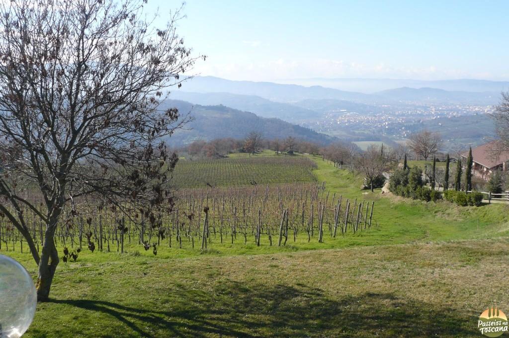 Arezzo_90