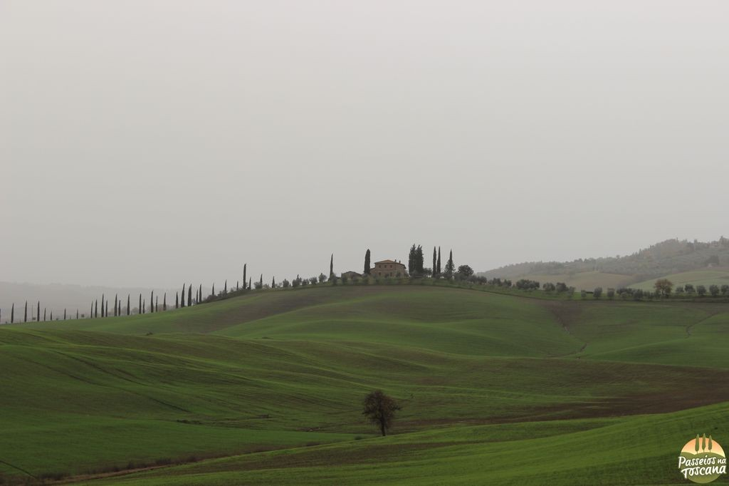 Valle D'Orcia_18