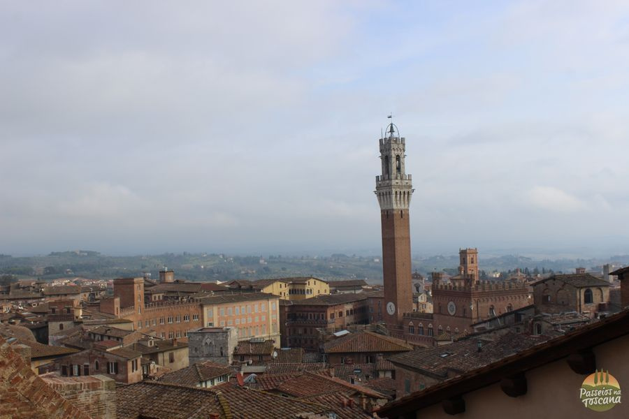 siena catedral_3