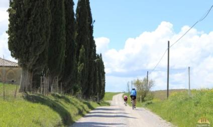 Wine – Bike tour em Bolgheri – diário