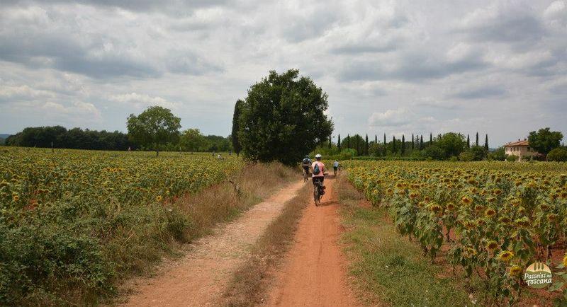 bike-tour-siena_1