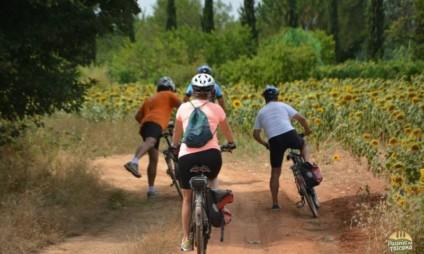 Bike tour em Siena e região – diário