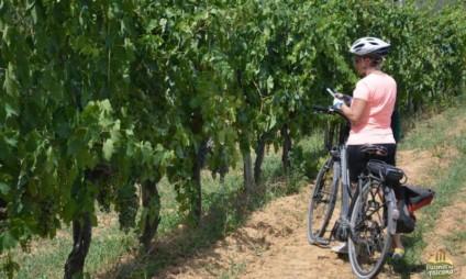Bike tour no Chianti – diário