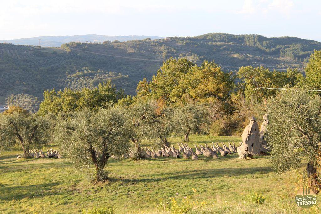 jardim-giardino-daniel-spoerri-amiata_33