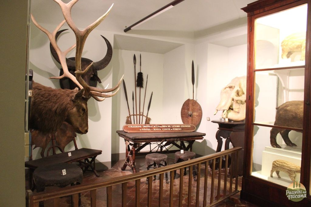museu-della-specola-florenca_56