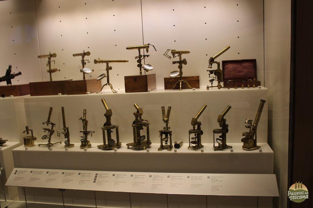 Os microscópios