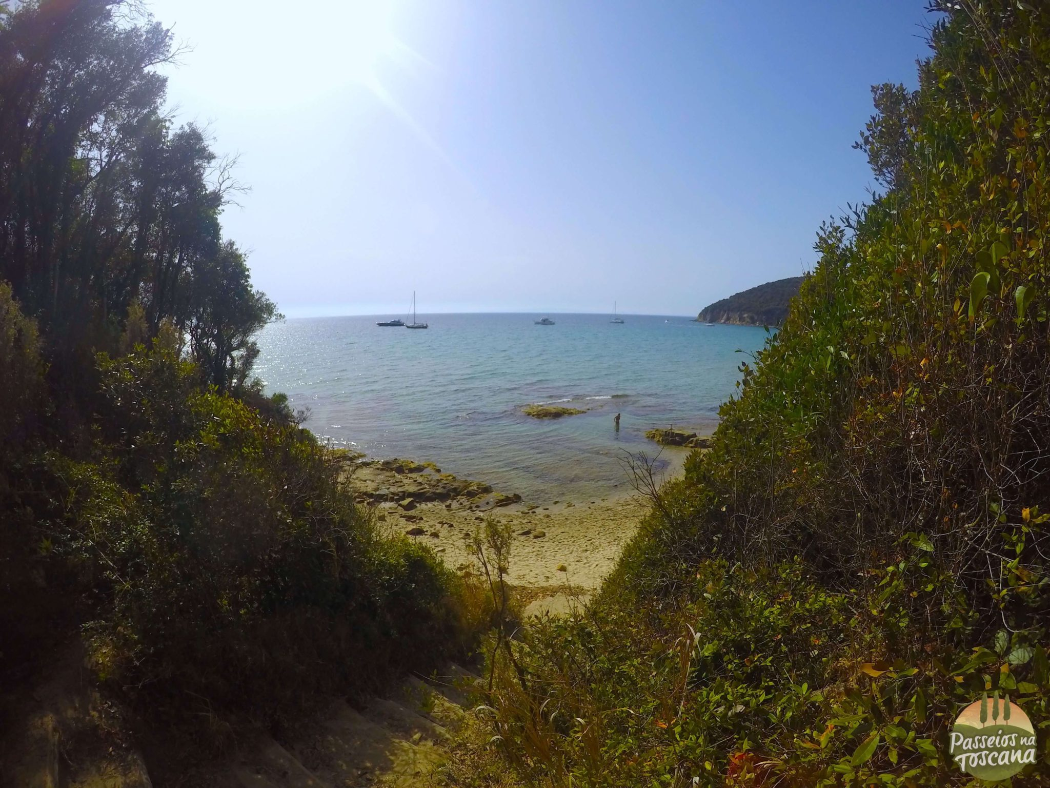 praia de cala violina scarlino maremma 2 1024x768